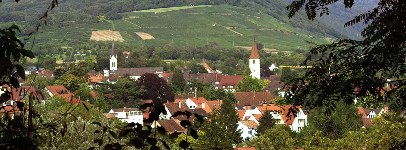 Zuflucht Müllheim e.V.